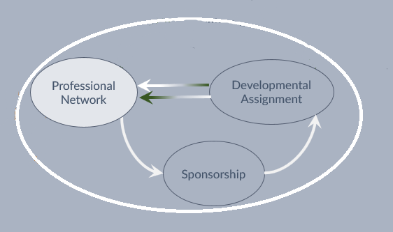 Virtuous Circle of Professional Networking -> Sponsorship -> Developmental Assignment and back to Professional Networking