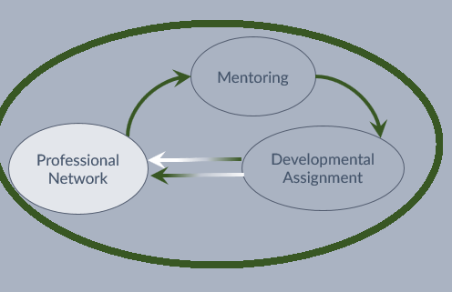 Virtuous Circle of Professional Networking -> Mentoring -> Developmental Assignment and back to Professional Networking