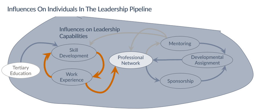 Work experience leads to development of a professional network, with the potential for both mentoring and sponsorship, either of which may lead to developmental assignments which in turn further develop the professional network, work experience and skills.